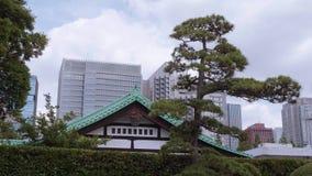 19, 2018 cesarskiego pałac Wschodni ogródy w Tokio, TOKIO JAPONIA, CZERWIEC -, - zdjęcie wideo