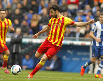 Cesc Fabregas of FC Barcelona Royalty Free Stock Photography