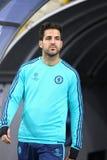 Cesc Fabregas FC Chelsea Obrazy Stock