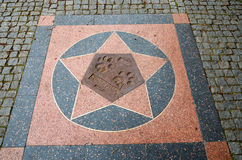 cesky捷克krumlov中世纪老共和国城镇视图 布拉格 布拉格动物园 狮子的爪子踪影  2016年6月12日 免版税库存图片