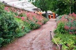 cesky捷克krumlov中世纪老共和国城镇视图 布拉格 布拉格动物园 路和花 2016年6月12日 库存图片