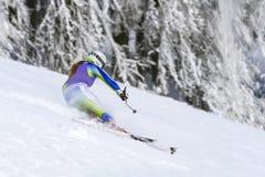 cesky捷克krumlov中世纪老共和国城镇视图 1月, 26日 2013年 在下坡期间的年轻活跃女孩滑雪者 kiting的河滑雪多雪的体育运动冬天 库存照片