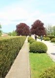 Cesky Krumlov ogród zdjęcie royalty free