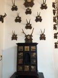 Cesky Sternberk城堡,捷克内部  免版税库存图片