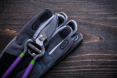 Cesoie con i guanti di sicurezza sul giardinaggio di legno d'annata del fondo Fotografia Stock