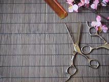 cesoie e pettine di taglio dei capelli Fotografia Stock Libera da Diritti