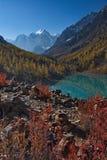 Cespugli rossi contro lo sfondo delle cime della montagna e del lago Immagini Stock Libere da Diritti