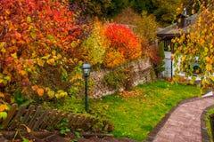 Cespugli variopinti di autunno nell'iarda del paese ALPI DELLA DOLOMIA, ITALIA Immagine Stock