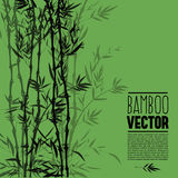Cespuglio di bambù, pittura dell'inchiostro Fotografia Stock Libera da Diritti