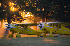 Cessnas in the Sunlight. Two yellow Cessna airplanes sit side-by-side near trees with the sun setting behind them Stock Image