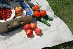 cesta 2 de la Retro-comida campestre Imagenes de archivo