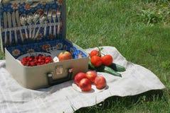 cesta 3 de la Retro-comida campestre Imagenes de archivo