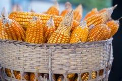 Cesta amarela do milho Imagem de Stock