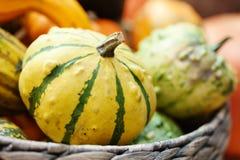 Cesta amarilla rayada de la calabaza Fondo del día de la acción de gracias de Halloween De las verduras todavía de la cosecha vid Foto de archivo