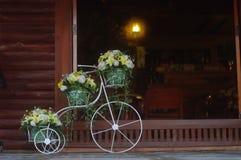 A cesta bonita da flor na bicicleta está estacionando na frente da porta Foto de Stock
