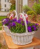 Cesta branca com sinos e os ovos da páscoa de florescência Fotos de Stock