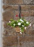 Cesta colgante de flores Fotografía de archivo