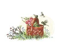 Cesta colorida da flor do projeto do estilo da pintura do vetor do verão ilustração royalty free