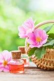 Cesta com as flores do quadril cor-de-rosa e as garrafas do óleo Fotografia de Stock Royalty Free