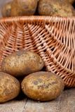 Cesta com batatas frescas imagem de stock