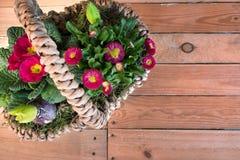 Cesta com flores da mola Imagem de Stock Royalty Free