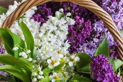 Cesta com flores da mola Fotografia de Stock Royalty Free