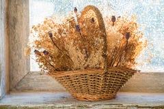 Cesta com flores secadas Imagens de Stock Royalty Free