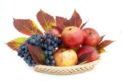 Cesta com maçãs e uvas Fotografia de Stock