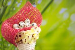 Cesta com os ovos da páscoa na grama verde Imagens de Stock Royalty Free