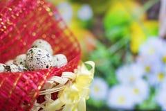 Cesta com os ovos da páscoa na grama verde Fotos de Stock