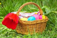 Cesta com ovos da páscoa e a tulipa vermelha Imagens de Stock