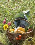 Cesta com vegetais Fotografia de Stock Royalty Free