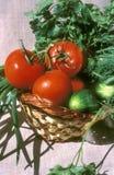 Cesta com vegetal imagens de stock