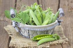 Cesta completamente de ervilhas verdes fotos de stock royalty free