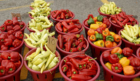 Cesta completamente do doce e de pimentos frescos Fotos de Stock