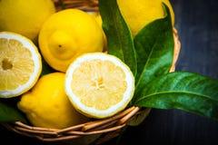 cesta completamente do limão fresco Fotografia de Stock