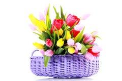 Cesta completamente dos tulips foto de stock royalty free