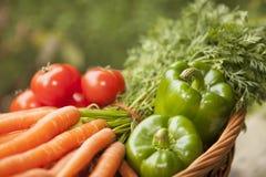 Cesta completamente dos vegetais imagem de stock royalty free