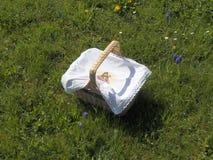 Cesta con el paño del este en hierba imagen de archivo libre de regalías