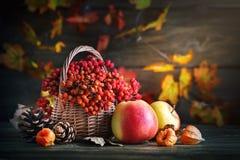 Cesta con el serbal y las manzanas en una tabla de madera Aún-vida del otoño Fotos de archivo
