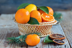 Cesta con la fruta cítrica y las ramas spruce Imagen de archivo