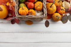 Cesta con las calabazas y las calabazas coloridas para Halloween y la acción de gracias Fotografía de archivo