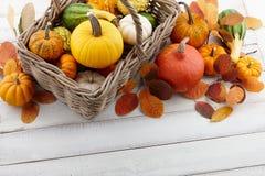 Cesta con las calabazas y las calabazas coloridas para Halloween y la acción de gracias Foto de archivo