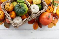 Cesta con las calabazas y las calabazas coloridas para Halloween y la acción de gracias Foto de archivo libre de regalías