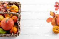 Cesta con las calabazas y las calabazas coloridas para Halloween y la acción de gracias Fotos de archivo
