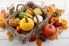 Cesta con las calabazas y las calabazas coloridas para Halloween y la acción de gracias Imagen de archivo