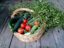 Cesta con las diversas verduras Foto de archivo