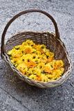 Cesta con las flores de la maravilla Imagen de archivo