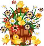 Cesta con las flores y los anadones Imagenes de archivo