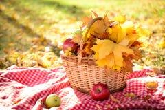 Cesta con las hojas y las frutas de otoño fotografía de archivo
